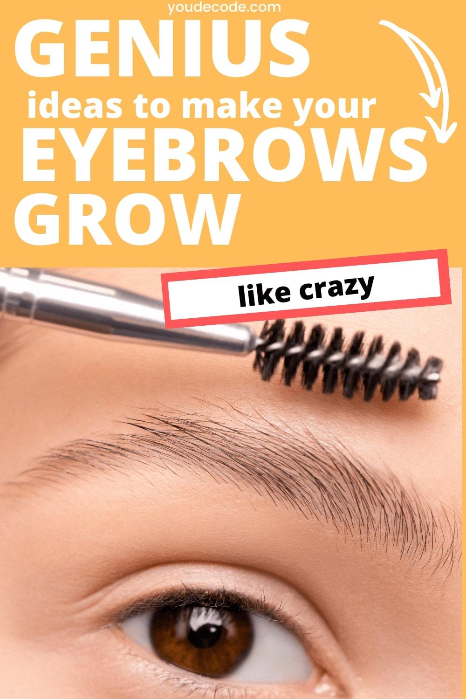 eyebrows growth